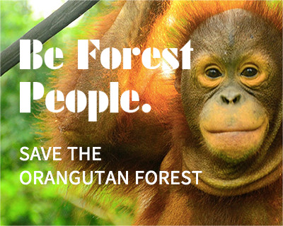 SAVE THE ORANGUTAN FOREST